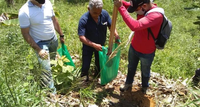 Secretaria Municipal de Agricultura e Emater, realizam identificação de solo para prática de bananicultura